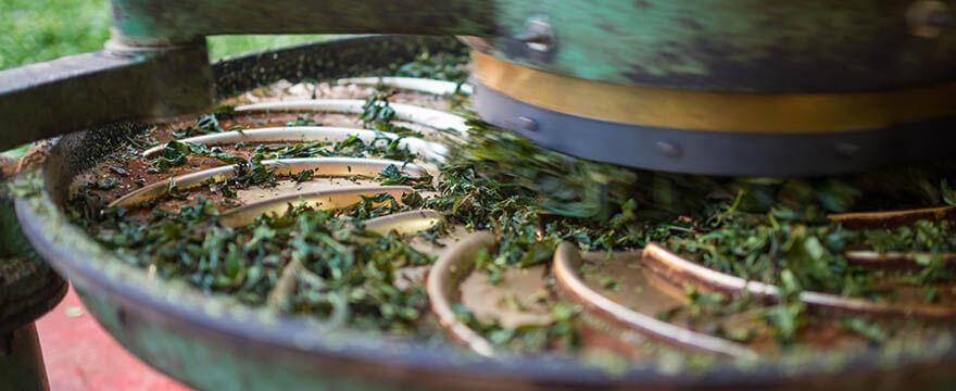 Tee-Analyse in der Produktion