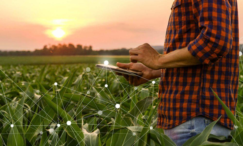 Foto: Ernährungssicherheit - Vernetzter Lebensmittelanbau - mobile Qualitätsprüfung