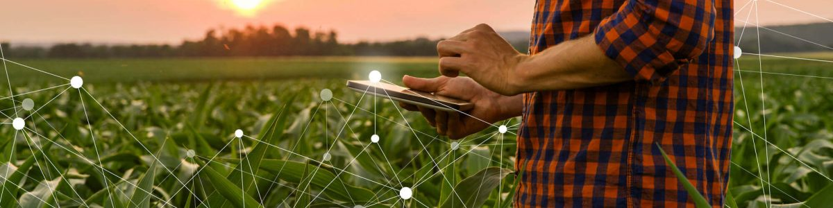 Photo: Food security - networked farming grow - mobile quality monitoring
